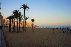 Nos encontramos en el #crepúsculo del día. Ese momento especial entre la salida y la puesta de sol en el que el cielo se tiñe de los cálidos rayos de sol. 😍  #HotelCarlosBenidorm #HotelCarlosI #HotelBenidorm #Hotel #HotelesBenidorm #Hoteles #CostaBlanca #Playa #PlayaBenidorm #CiudadBenidorm #TurismoCostaBlanca #Turismo #Benidorm #Benilovers