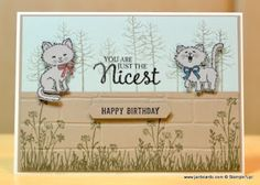 2016 Used  FIVE stamp sets! Thoughtful Branches Stamp Set,  Pretty Kitty , sentiment from the Picture Perfect Stamp set  , Happy Birthday sentiment from the Confetti Celebration Stamp Set ,  In The Meadow