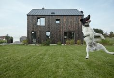 Mjölk Architekti's Carbon House is a gabled home is wrapped in a charred and multi-tonal timber facade near Prague.
