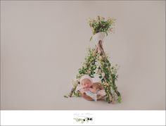 Sun Prairie WI Newborn session and workshop, sticks, twigs, olives, leaves, bundles, cherubs, angelic, newborn, babies, bonnets, hair flowers, swaddled, baskets, sleeping peaceful babies. Twig and Olive