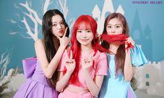 Kpop Girl Groups, Korean Girl Groups, Kpop Girls, Yuri, Honda, Survival, Japanese Girl Group, Scene Photo, Extended Play