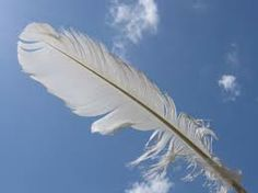 Your loved ones in the after-life are constantly showing you that they are around you and that they love you by leaving signs - feathers, coins, birds, music or other symbols that get your attention. Allow these signs to guide & heal you.
