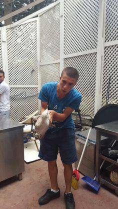 Arkadaşım ayağı sıkışan martıyı kurtardıktan sonra #martıduası