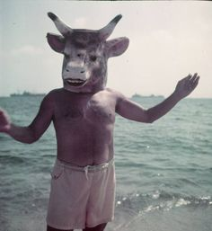 Picasso  Artist Pablo Picasso wearing a cow's head mask on beach at Golfe Juan near Vallauris.  Location:	Vallauris, France  Date taken:	1949  Photographer:	Gjon Mili