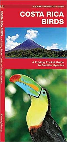 Product review for Costa Rica Birds: A Folding Pocket Guide to Familiar Species (Pocket Naturalist Guide Series) -  The stunning resplendent quetzal – a species atop every birder's life checklist – is one of over 900 species of birds inhabiting this tropical paradise. This beautifully illustrated guide highlights over 140 familiar and unique species and includes an ecoregion map featuring prominent... -  http://www.bestselleroutlet.net/product-review-for-costa-rica