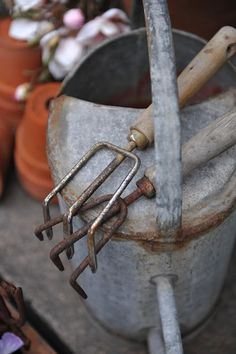 love old watering cans, and garden tools: have them, but how to display them tastefully?