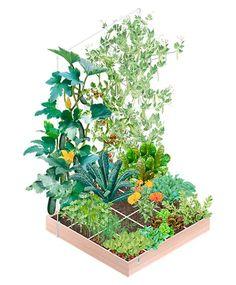 der Geniale Gemüsegarten | So einfach geht's