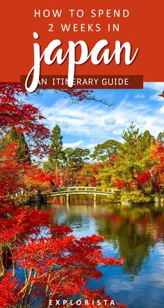 Planning to travel to Japan soon? Here are all the top things to do with a 2 week itinerary! From Tokyo to Kyoto to Nara, you'll find plenty to do with culture, architecture, and more. #japan #itinerary