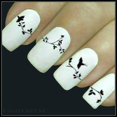 Animal Nail Decal Bird Nail Art Water Slide Decals by DecalGirlUSA
