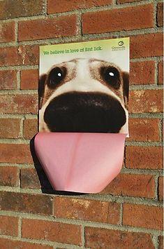 Adopt a pet ad