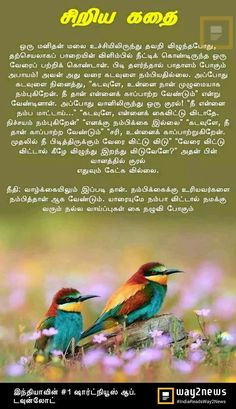 Small Stories For Kids, Moral Stories For Kids, English Moral Stories, English Stories For Kids, Life Coach Quotes, Life Lesson Quotes, Good Thoughts Quotes, Good Life Quotes, Motivational Stories In Tamil