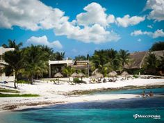 Pamool alejándose del bullicio de la ciudad y disfrutando de su hermoso paisaje el cual pareciera que fue plasmado por el más exquisito pintor que dibujó un entorno majestuosos con arrecifes y peces multicolores dándole vida a un mar turquesa y a una de las playas más blancas del Caribe. http://ift.tt/1m3yoTN