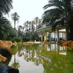El Palmeral park, Alicante, Spain