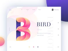 B&Bird – Ui design concept and visual style by Brenttton