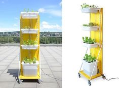 How to Build Indoor Hydroponic Gardens Using IKEA Storage Boxes #hydroponicgardens