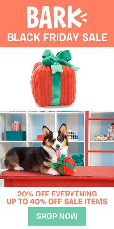 Puppy Hoodie Dog Gift Idea Funny Canine Theme German Shepherd Ate My Homework