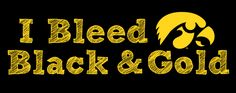 Real Hawkeyes Bleed Black & Gold – Donate Blood!