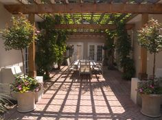 Backyard landscape and patio design