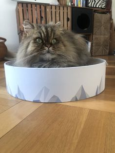 I just can't stop with these Pidan Studio cat products. They include everything I want in a cat… Ikea Cat Bed, Diy Cat Tower, Cardboard Cat Scratcher, Old Wicker, Cat Water Fountain, Sisal Rope, Cat Scratching Post, Cat Carrier, Cat Accessories