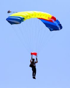 pics of things to do in south america - Google Search