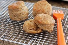 These Flavorful Beer Biscuits Are Perfect With a Meaty Stew: Guinness and Cheddar Biscuits