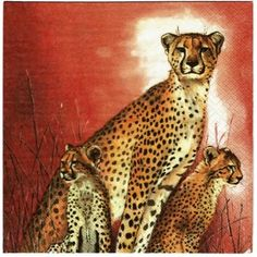 Servilleta decorada Etnica mama guepardo