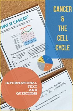 Cell cycle and cancer. Informational text with lots of diagrams and questions. Cell Cycle Activity, High School Biology, Teaching Secondary, Cell Structure, Tools For Teaching, Cell Biology, Mitosis, School Levels, Cell Membrane
