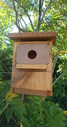 Caja nido oficial para aves insectívoras tratada