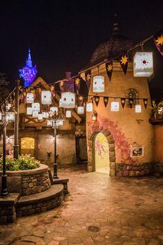 Night Photography of Walt Disney World's Magic Kingdom