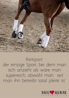 Reitsport: der einzige Sport, bei dem man sich anzieht als wäre man superreich, obwohl man seit man ihn betreibt total pleite ist.