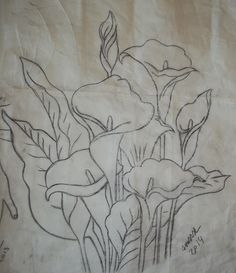 Lily Painting, Fabric Painting, Flower Sketches, Art Sketches, Pencil Drawings, Art Drawings, Lilies Drawing, Turkish Art, Hand Art