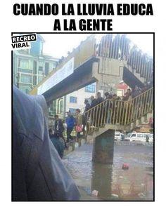 Solo así utilizan los puentes #cultura #cialidad #gente #meme #foto Memes Estúpidos, Dbz, Funny Images, Puns, Funny Jokes, Marvel, Entertaining, Anime, Pictures