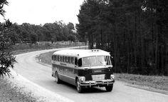 Oppad na Plettenbergbaai 1955 - Kruisfontein Bosboustasie op linkerhand. Foto Hilton T House In Nature, Knysna, Wilderness, Landscape Photography, Houses, Colorful, Explore, History, Heart