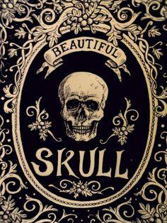 Beautiful skull