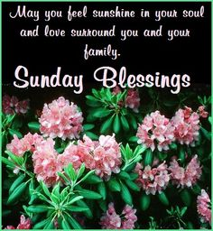 Sunday days of the week greetings pinterest m4hsunfo