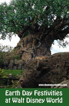 Earth Day at Walt Disney World