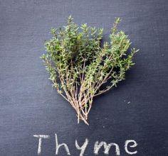 #thyme #tsougranaeu #blog