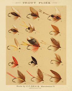 Trout+flies+fishing+print+fly+fishing+art+fishing+decor+art+old+prints+lake+cabin+decor+Antique+prints+fishing+wall+art+home+decor+wall+8x10