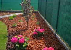 Galéria   Záhradníctvo Garden Team Gardening, Plants, Lawn And Garden, Plant, Planets, Horticulture