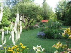 Thuya Gardens in Maine where I had the pleasure of going this past July. A slice of heaven on earth!