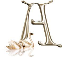 Precioso Alfabeto con Cisnes. Con Minúsculas.