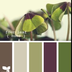 Love olive and plum together