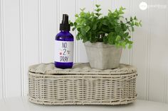 How To Make A Natural Toilet Odor Spray With Essential Oils · One Good Thing by Jillee