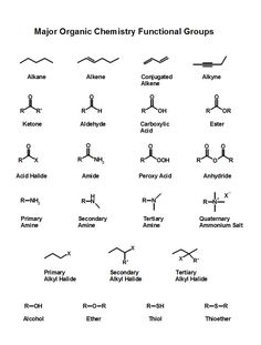 Funny Chemistry Cartoons | images of organic chemistry made easy teaching students wallpaper