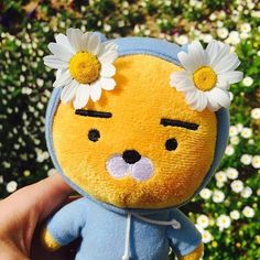 Please check out daily Kakao Friends items in online store. Cute Stuffed Animals, Cute Animals, Ryan Bear, Kakao Ryan, Fred Instagram, Kakao Friends, Korean Aesthetic, Aesthetic Yellow, Aesthetic Colors