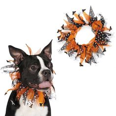 Aria® Bones & Bats Dog Scrunchy at The Animal Rescue Site