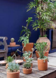 Área externa recebeu pintura azul que remete à cor da casa da pintora Frida Kahlo. Vasos de barro com diferentes espécies de plantas complementam a decoração do espaço.