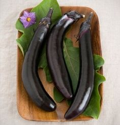 Orient Express Eggplant is a dark purple Asian type that produces attractive, slender, 8 to long by 1 to 2 diameter, glossy fruits. Ready up to two weeks before other early varieties Eggplant Varieties, Eggplant Seeds, Garden Seeds, Planting Seeds, Spring Garden, Lawn And Garden, Sheep And Wool Festival, Seed Packaging, Insect Pest