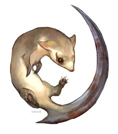 The kamaitachi from Japan. There are several conceptions of how it looked or operated, but the most common is one of a trio of weasels with sharp claws, riding on a gust of wind and cutting people's skin on the legs. G.River