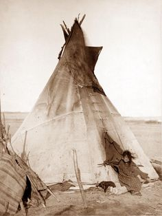 Sioux Indians    日記の最新記事】